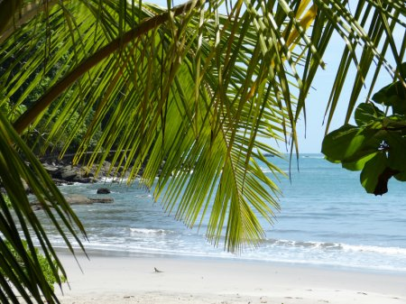 Costa Rica Mietwagenreise: Karibik - Halbinsel Osa - Pazifik