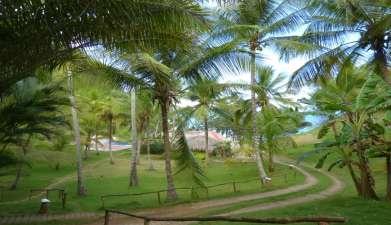 Villas Playa de Uva