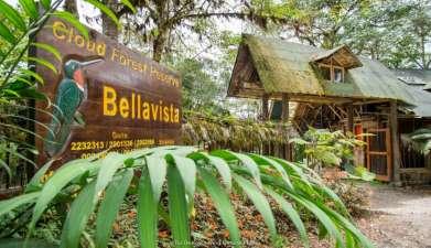 Bellavista Cloud Forest Reserve & Lodge