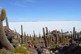 Bolivien Reiseinfos