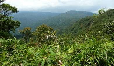 Biologisches Reservat Monteverde