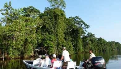 Bootsfahrt durch die Kanäle des Tortuguero Nationalpark
