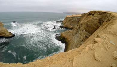 Exkursion in den Nationalpark Paracas