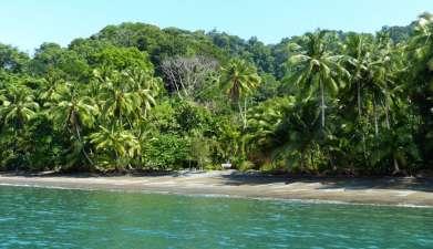 Bootsfahrt Golfo Dulce mit Besuch des Botanischen Gartens Casa Orquideas