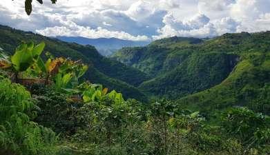 Ausflug zum Río Magdalena und Salto Mortiño