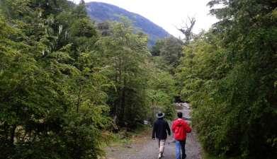 Trekking im Nationalpark Huerquehue