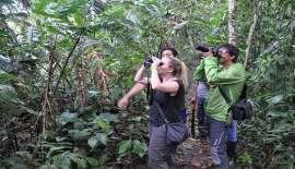 Dschungelwanderung im Schutzwald Selva Viva