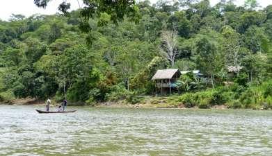 Hakuna Matata Lodge: Papageienlecke, Kichwa Dorf und Urwaldwanderung