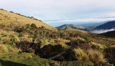 Tagesausflug in den Purace Nationalpark