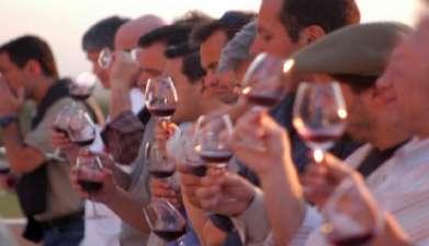 Weinverkostung in zwei Bodegas