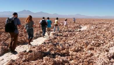 Ganztagesausflug Salar de Atacama und Lagunas Chaxas, Miscanti und Miñique