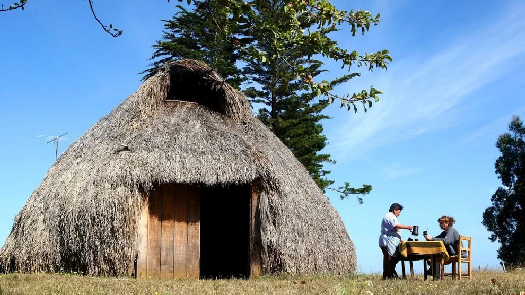 Tag 5 Pucón: Tagestour in das Mapuche Reservat