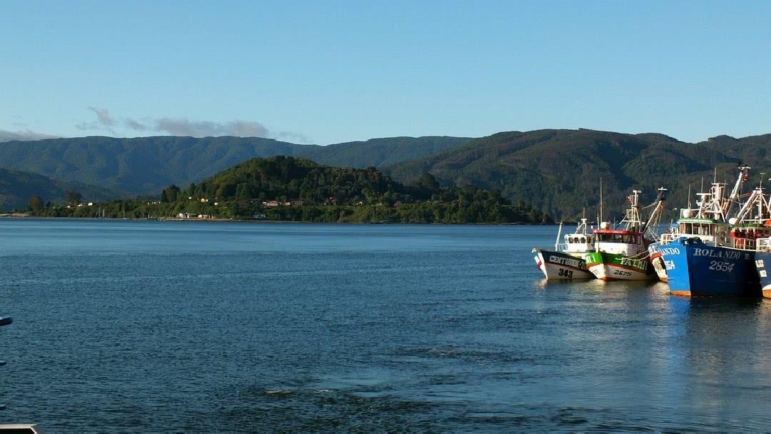 Tag 10 Valdivia: Tagestour in den Nationalpark Alerce Costero