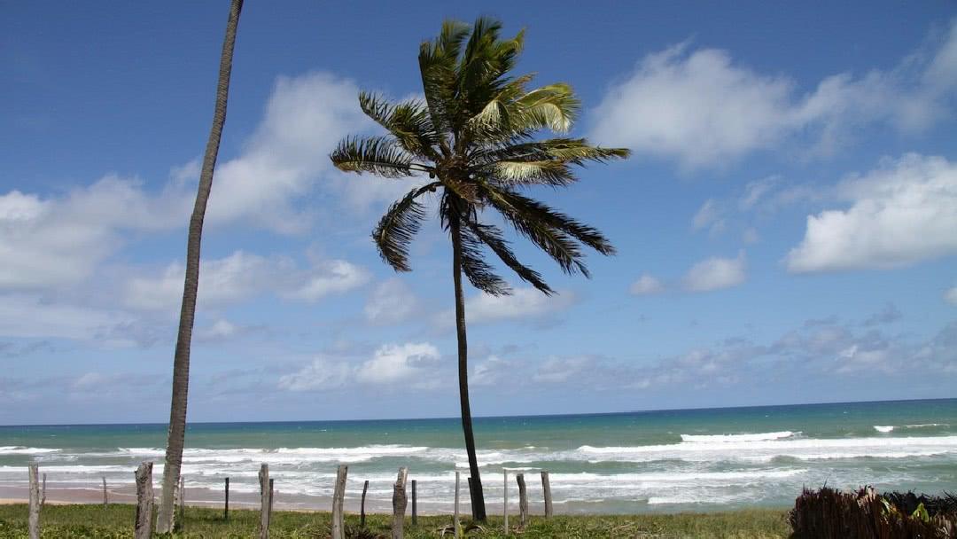 Tag 5 Imbassaí-Salvador da Bahia