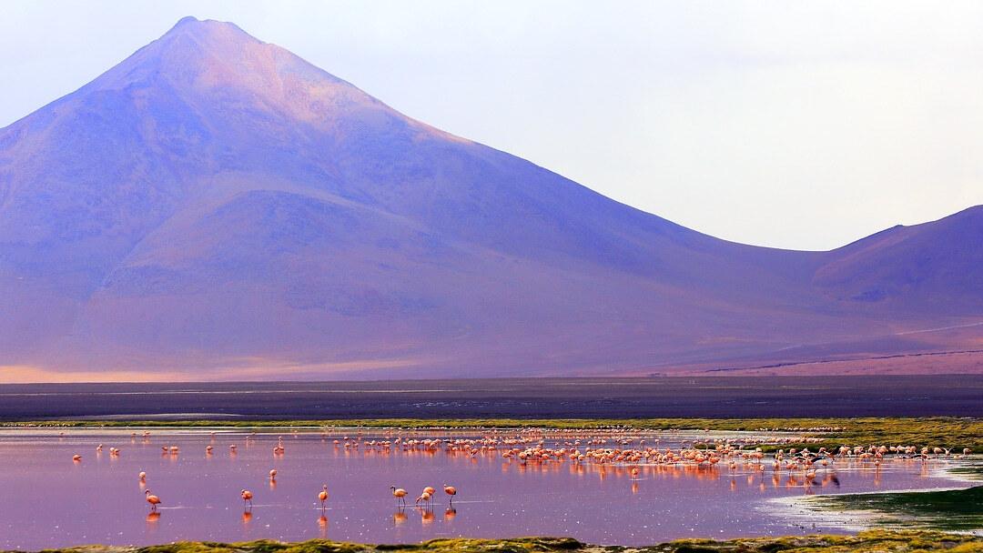 Tag 12 Ojo de Perdiz-San Pedro de Atacama