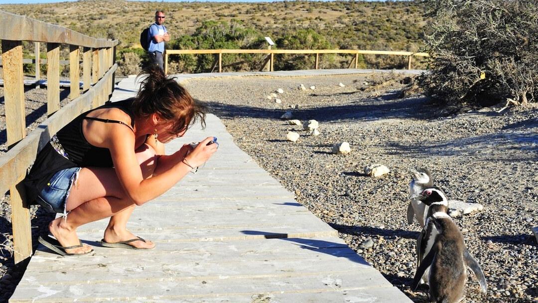 Tag 3 Puerto Madryn: Freier Tag