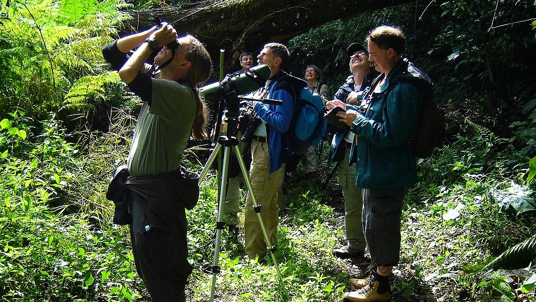 Tag 7 Chitré - Boquete: Wandern in Boquete und Umgebung
