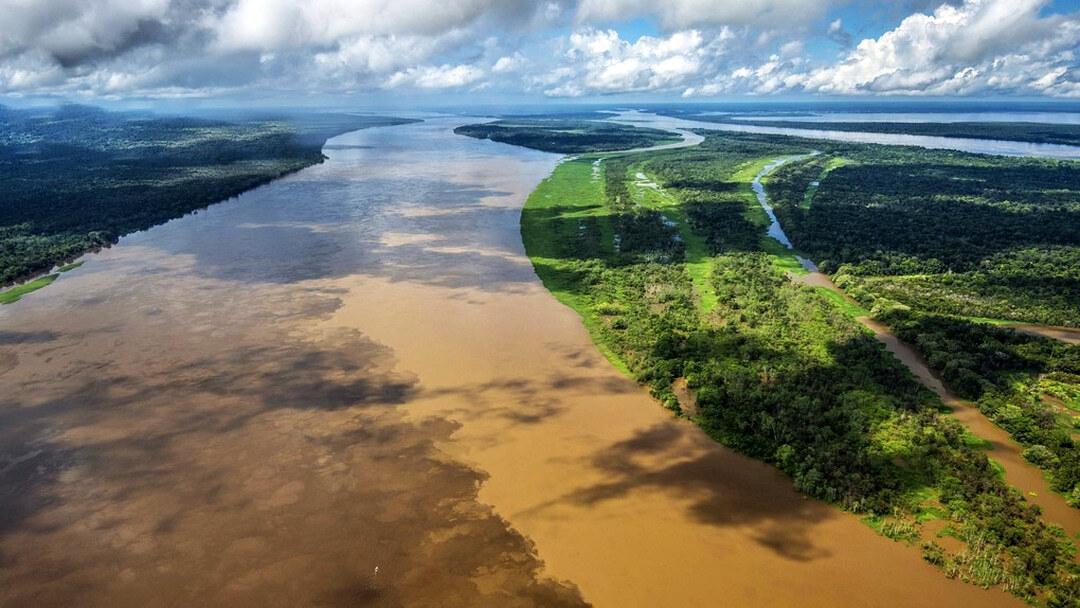 Tag 8 Manaus-Amazon Turtle Lodge