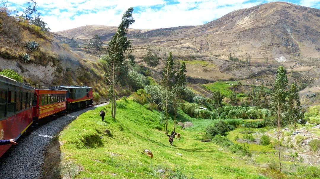 Tag 5 Cuenca-Zugfahrt über die Teufelsnase-Riobamba