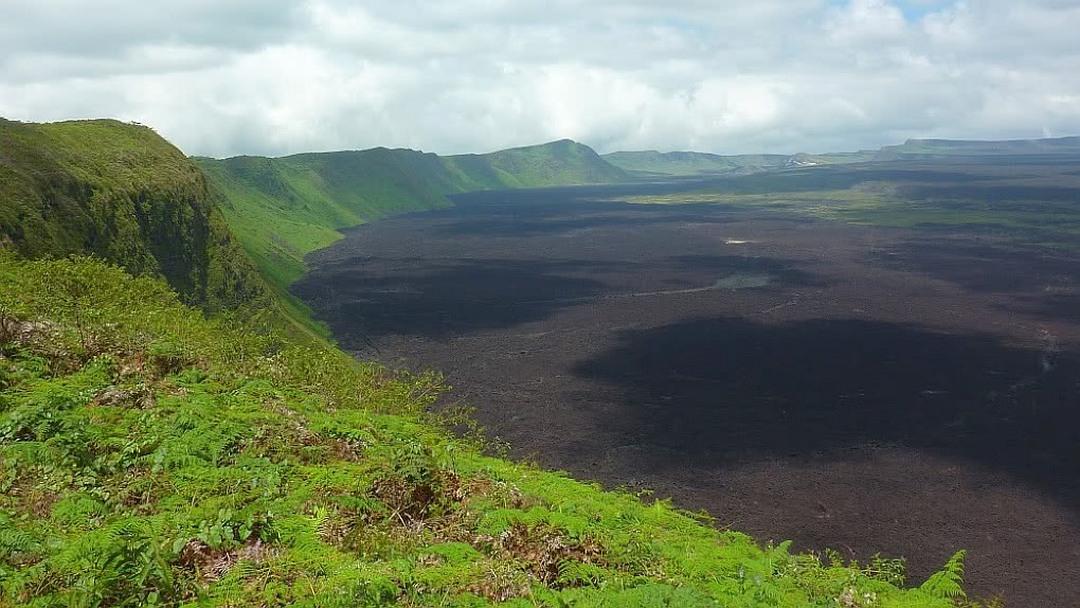 Tag 2 Insel Isabela,Tintoreras, Vulkan Sierra Negra, Schildkröten-Aufzuchtstation