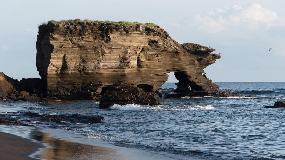 Tag 6 Insel Santiago (Puerto Egas)- Insel Rábida
