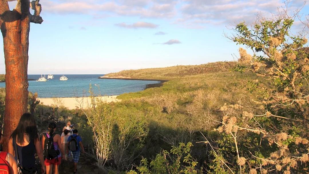 Tag 3: Plazas-Inseln und Insel Santa Fé