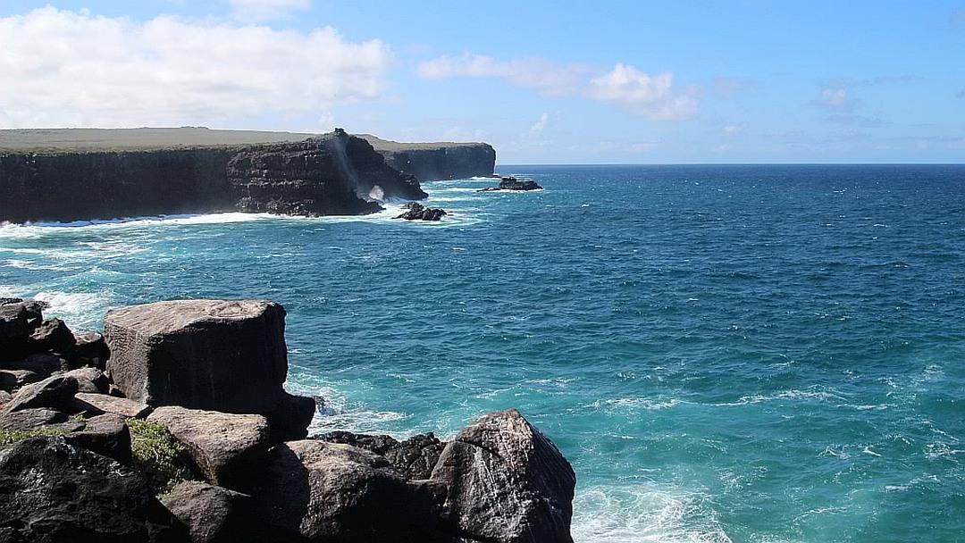 Tag 6: Insel Española mit Punta Suárez und Bahía Gardner