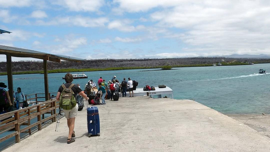 Tag 8 Transfer von Puerto Ayora nach Baltra, Charles Darwin Station