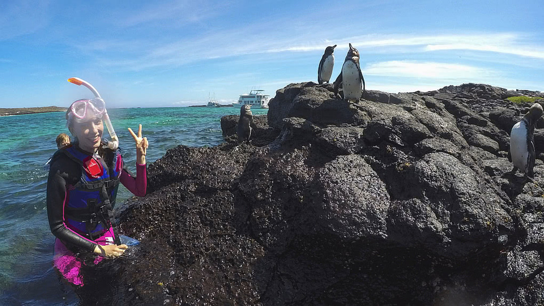 Tag 7: Insel Floreana und Insel Santa Cruz