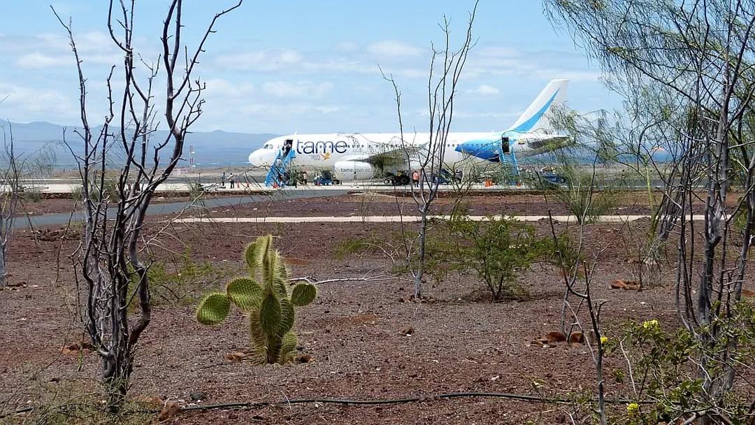 Tag 8: Insel Santa Cruz- Flughafen Baltra