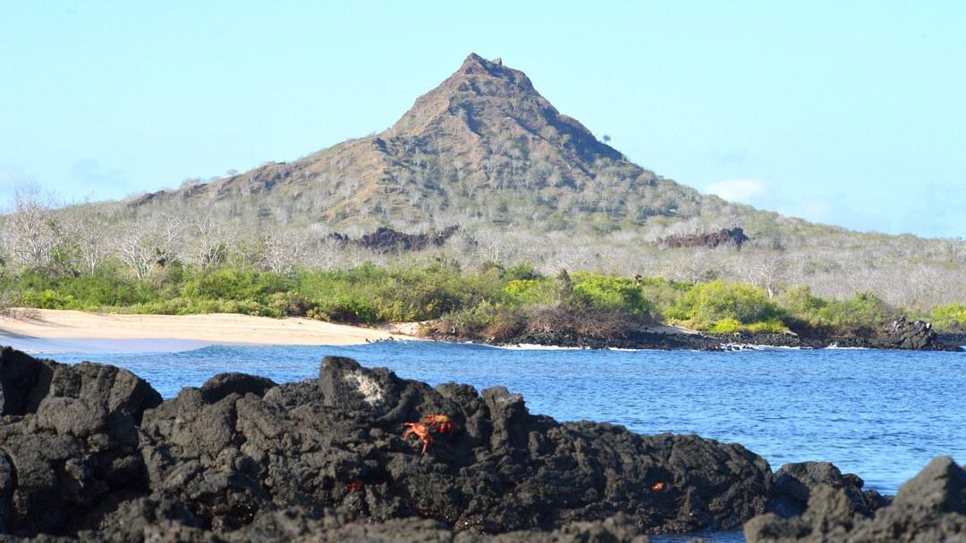 Tag 7: Insel Rábida und Insel Santa Cruz