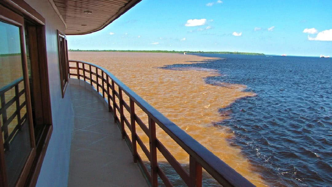Tag 1 Manaus-Amazonas: An Bord gehen des Expeditionsschiffes