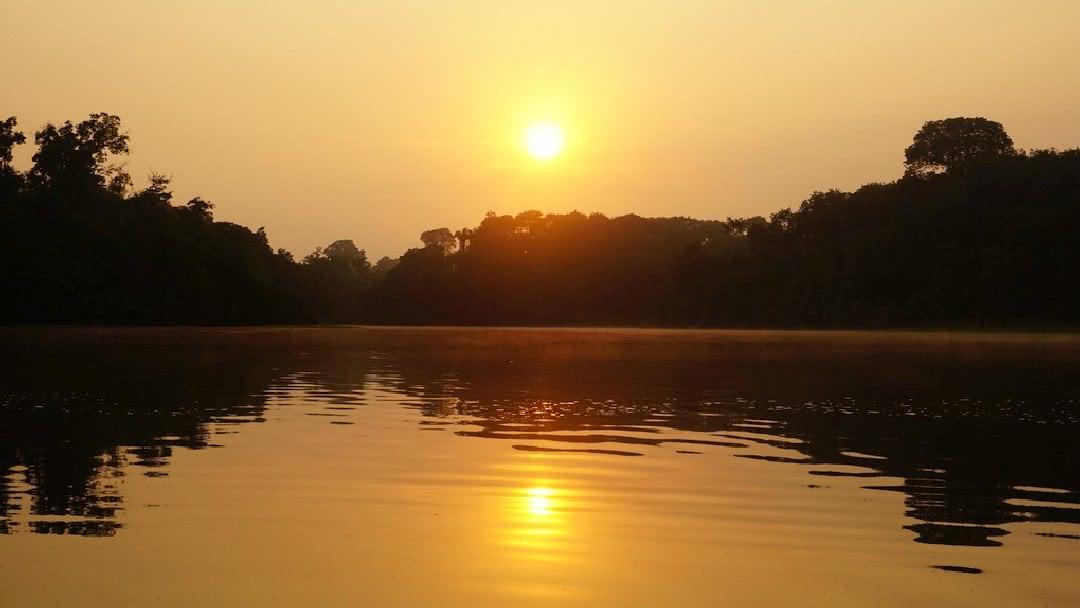 Tag 2 Amazonas: Rio Jaraqui und Dschungelwanderung
