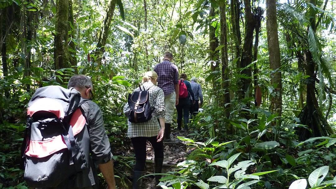 Tag 2 Dschungelausflug