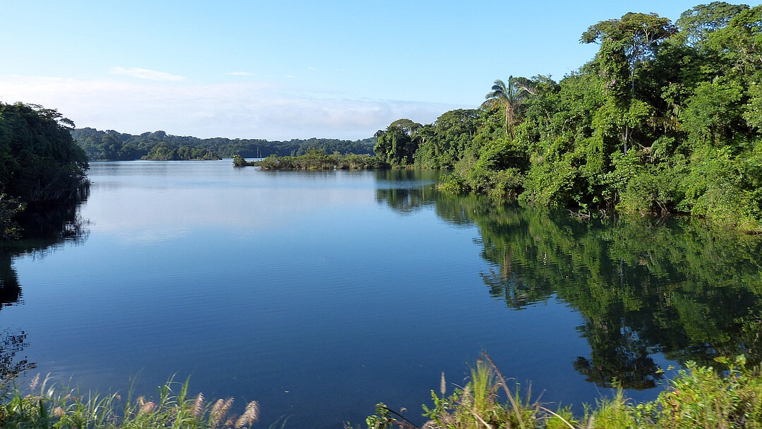 Tag 5 Las Cumbres - Nationalpark Soberanía und Gatún See - Panama Stadt