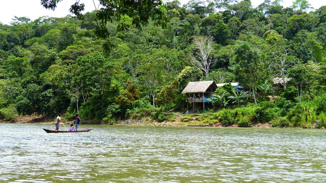 Tag 6 (Montag) Regenwald und Kichwa-Dorf