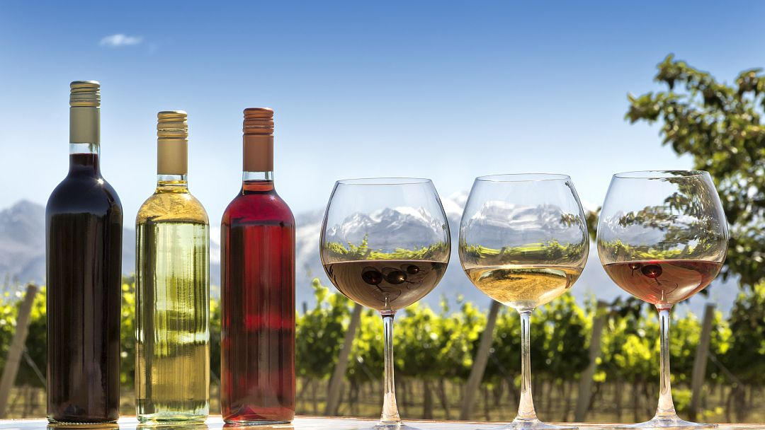Tag 3 Mendoza: Weinverkostung