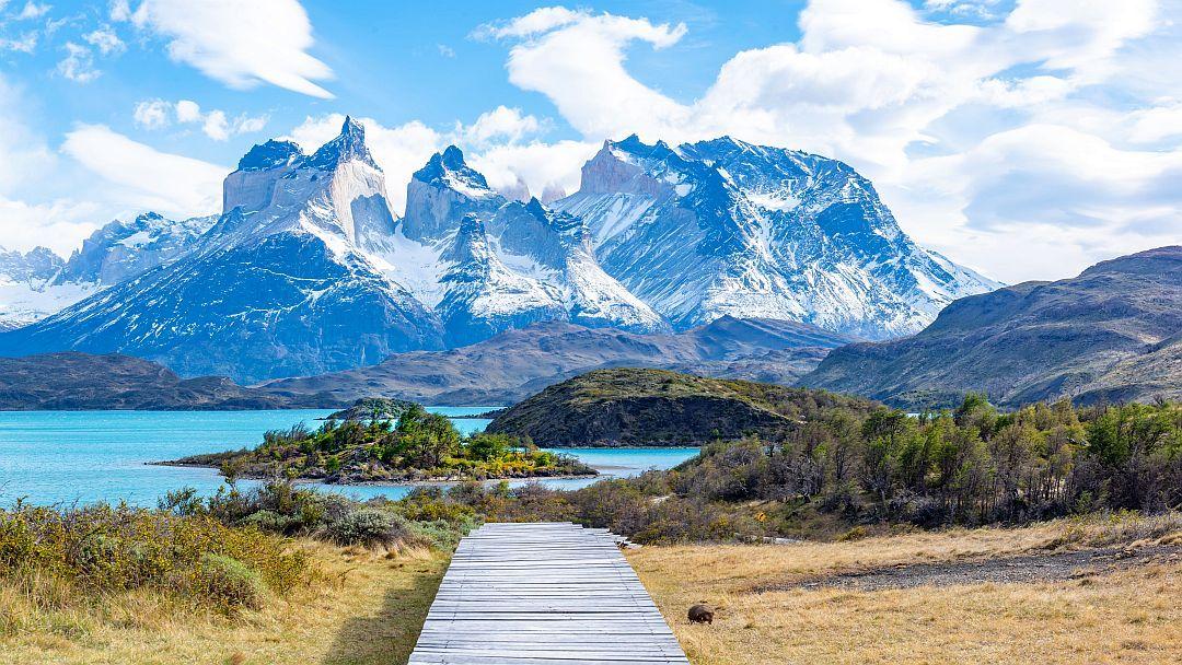 Tag 3 Puerto Natales-Paine Nationalpark: Besichtigung Paine NP