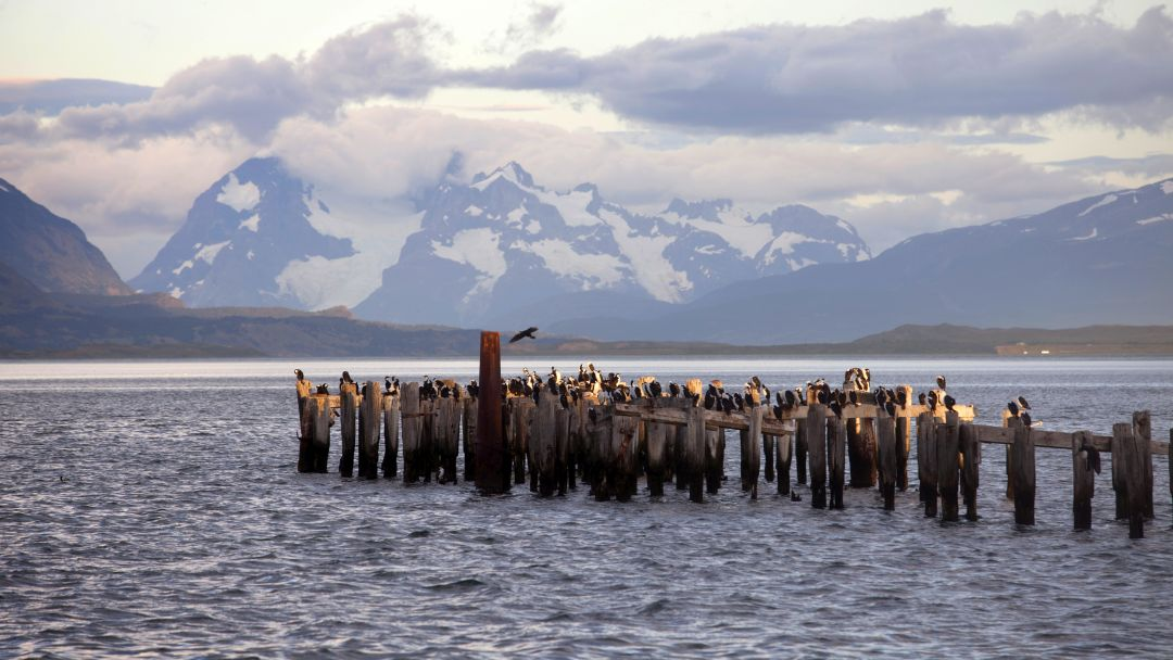 Tag 5 Puerto Natales-Punta Arenas: Abreise