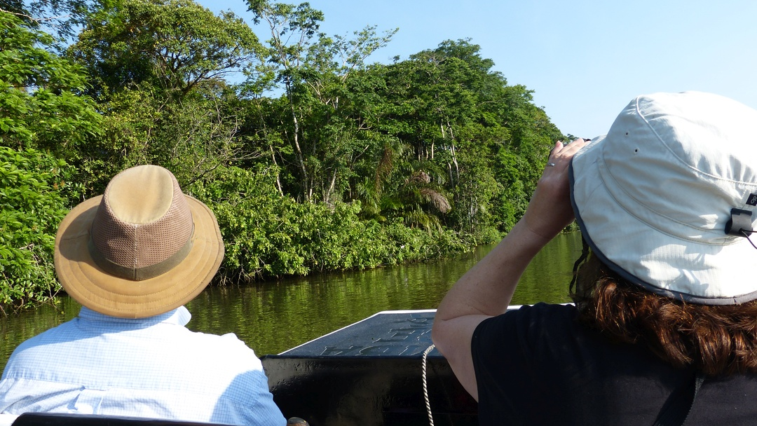 Tag 3 Tortuguero: Bootsfahrt
