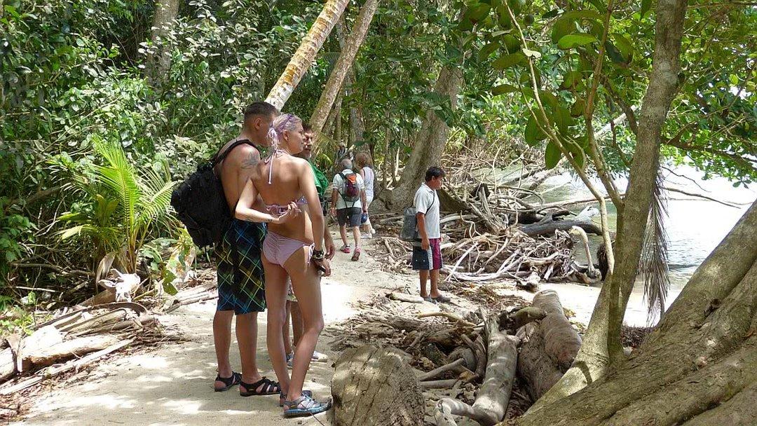 Tag 5 Karibik und Cahuita Nationalpark