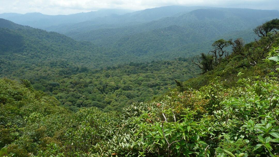 Tag 10 La Fortuna - Monteverde