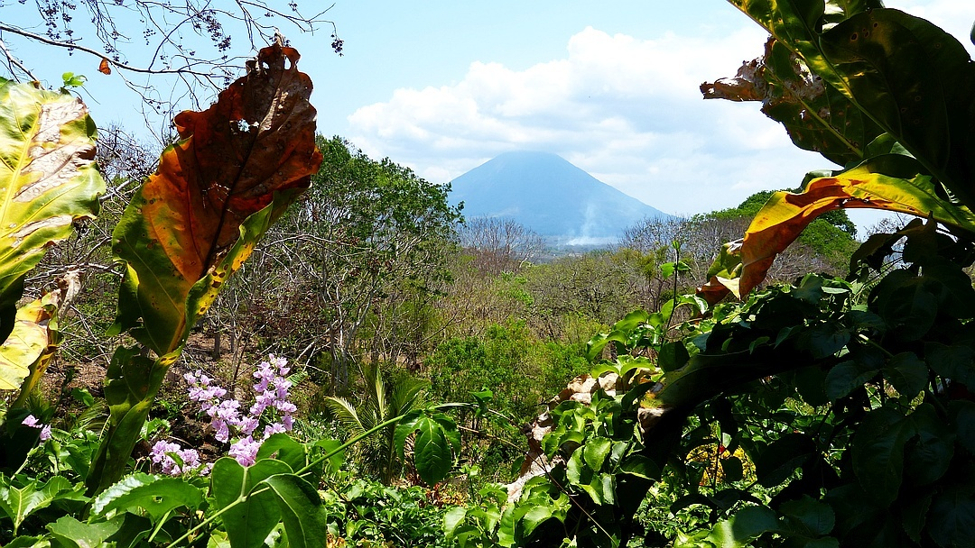 Tag 8 Insel Ometepe: Freier Tag
