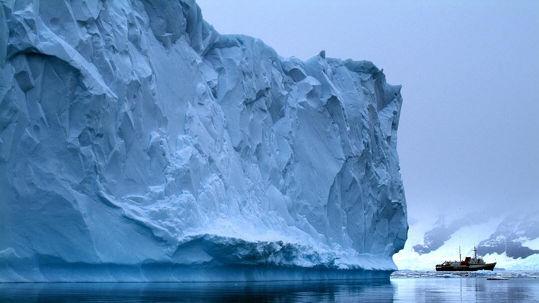 Tag 4 bis 6: Erkundung des Weddellmeeres