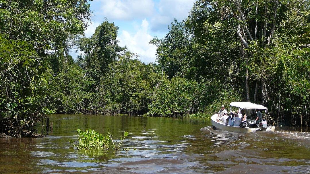Tag 11 Puerto Ordaz-Orinoco Delta: Bootssafari im Orinoco Delta