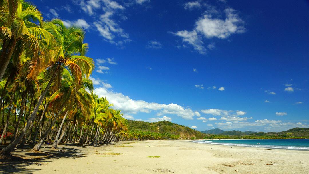 Tag 14 Monteverde - Playa Sámara