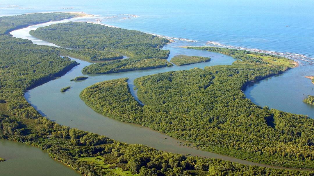Tag 1 Halbinsel Osa: Anreise / Rio Claro Naturreservat