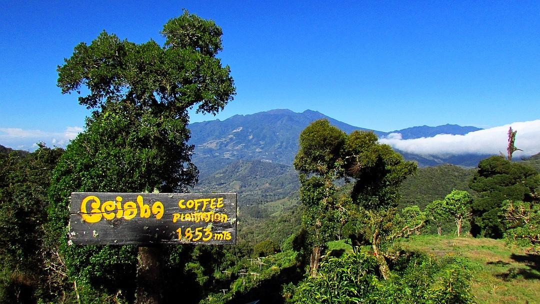 Tag 6 Boquete: Besuch einer Kaffee-Finca