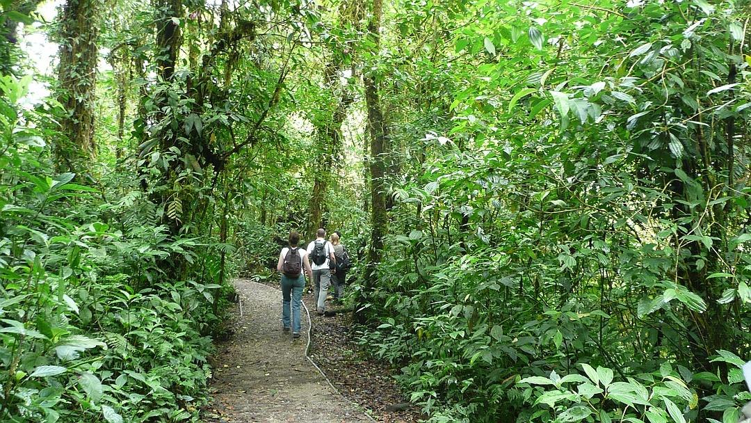 Tag 2 San José - Monteverde