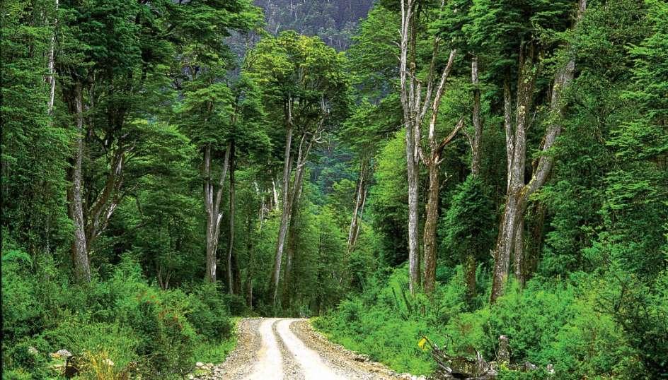Mietwagenreise Carretera Austral - Norden